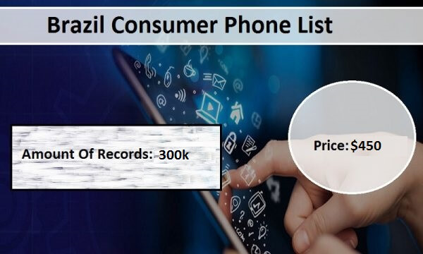 Brazil Phone Number List